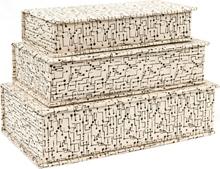 Schachtel Klappdeckel Punkt Streifengitt