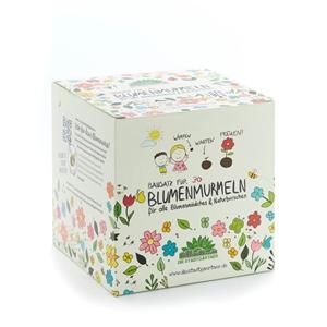 Saat Blumenmurmeln Kit für 30 Stück